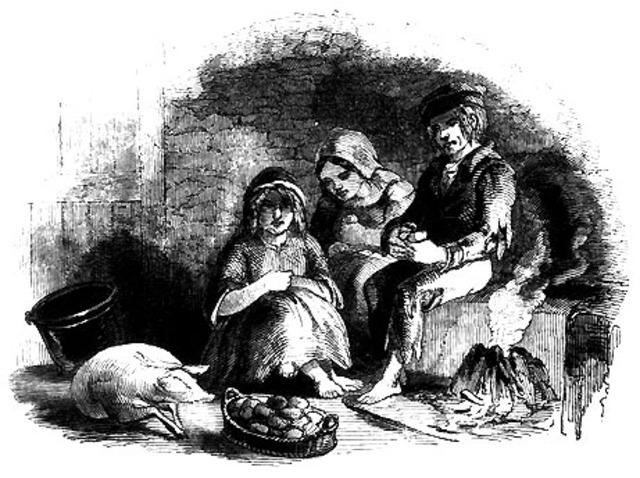 Irish Potato Famine Begins
