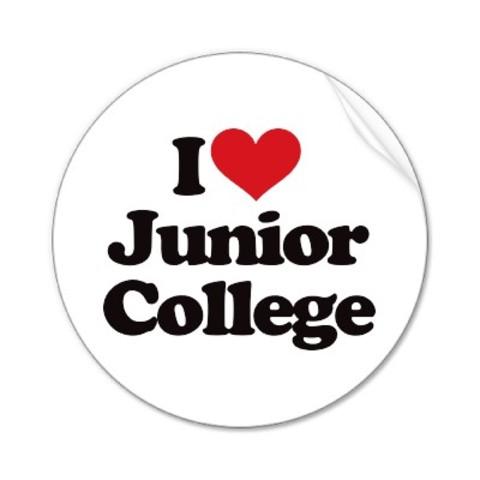 Junior Colleges Established
