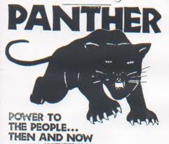 the start of the Black panthers