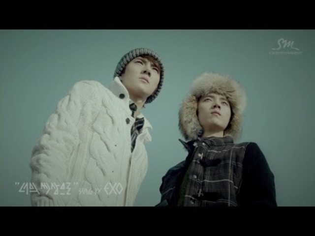 Teaser 9 Members Luhan&Kai