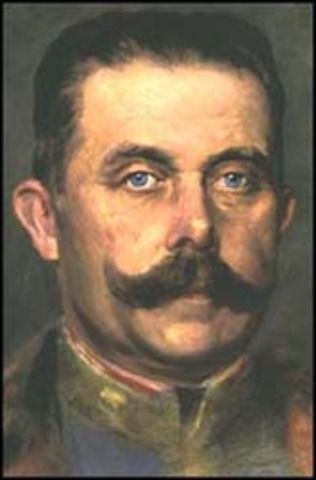 spark of WW1(archduke franz ferdinand killed)
