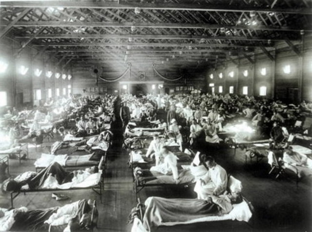 A pandemic of Spanish Influenza sweeps the globe
