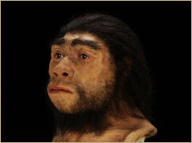 Homo Heidelbergensis 1907/1908