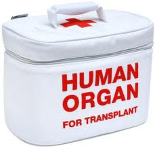 Science and technology:  First organ transplants