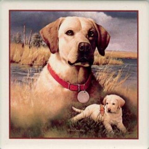 First Dog, Triger