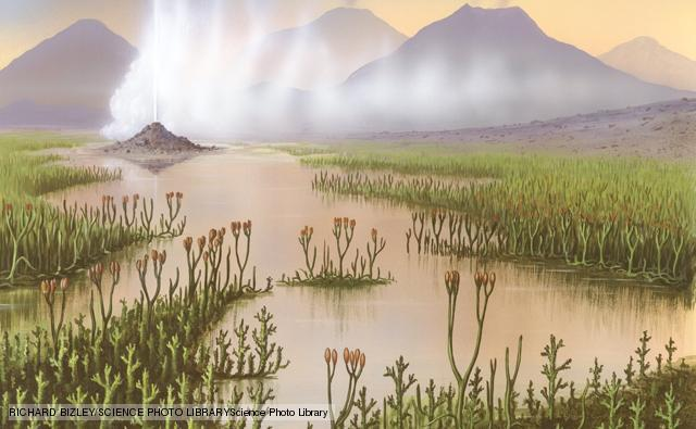 Silurian Period 438 - 408 Million Years