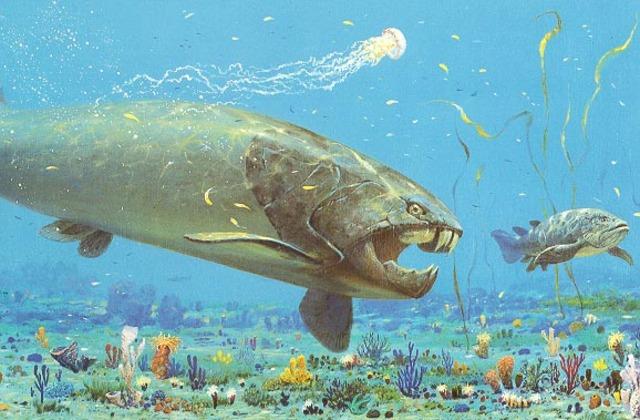 Devonian Period 408 - 360 Million Years Ago
