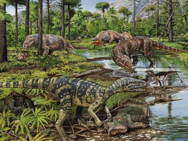 Triassic Period  247 - 203 Million Years Ago
