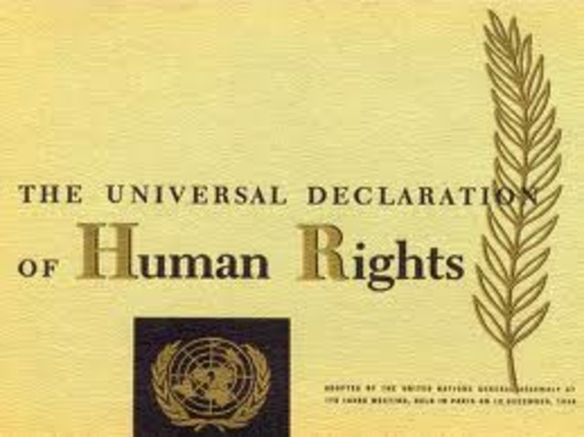 Universal Declariation Of Human Rights By U.S.A.