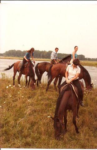 Reiterferien in Ungarn