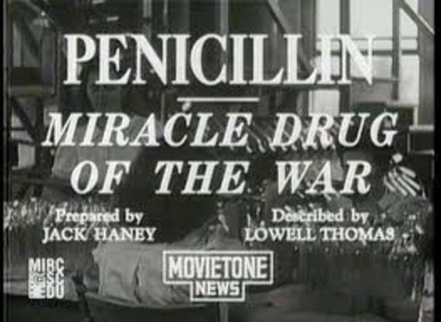 Mass-Produce Penicillin