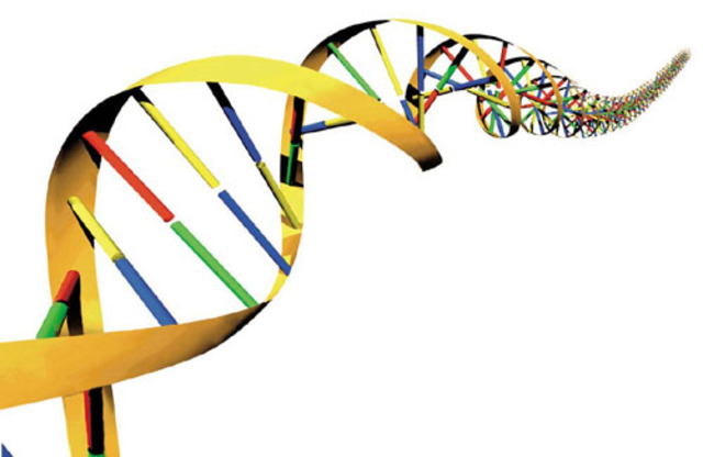 Science and Technology: Genome Progect