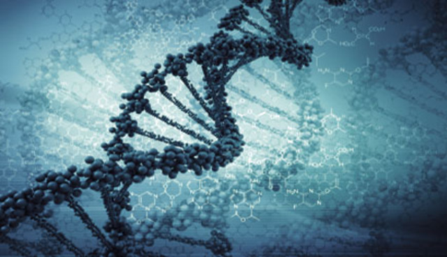 DNA used to convict criminals