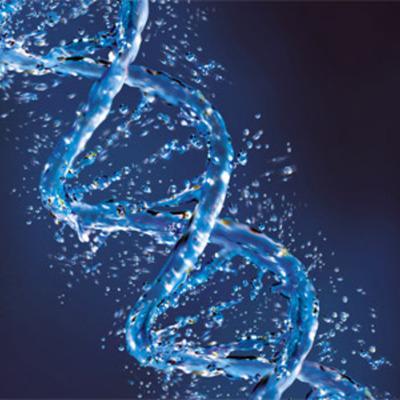 Principales descucbrimientos del ADN timeline