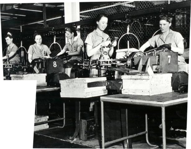 Women and Minorities in the Workforce