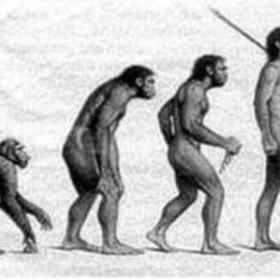 origenes del ser humano timeline
