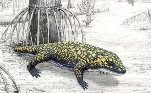 First Animals Appear on Land 417 Million Years Ago