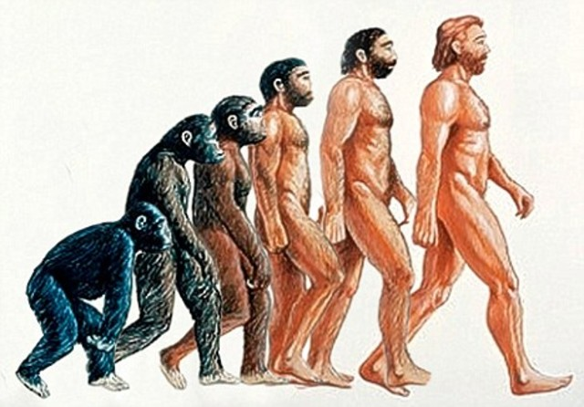 First Humans Appear - 2 Million Years Ago