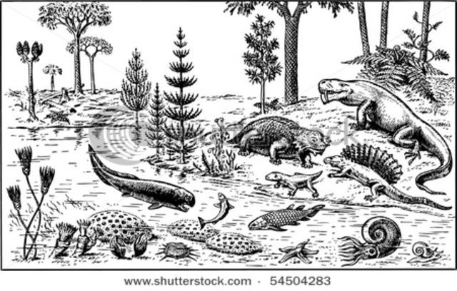 Beginning of Paleozoic Era