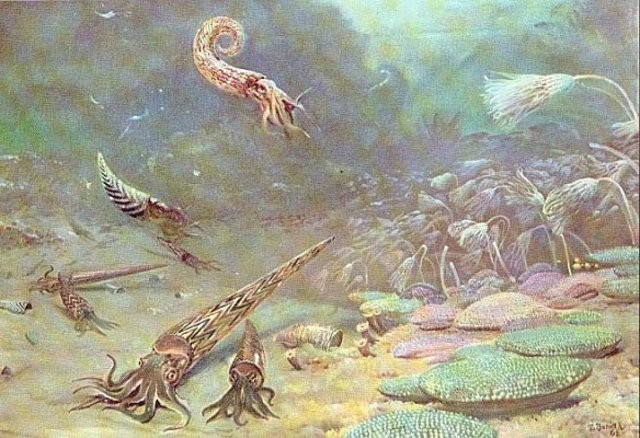 Beginning of Silurian period