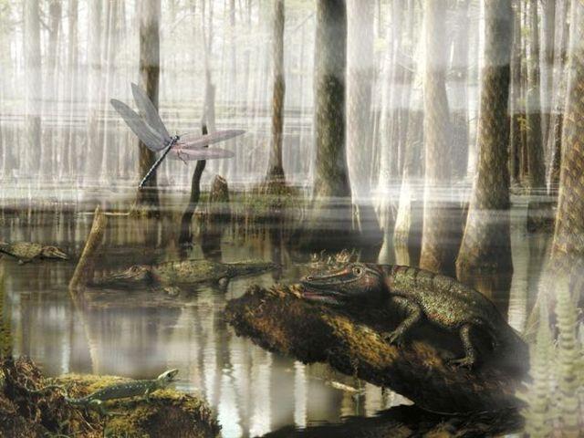 Beginning of Carboniferous period