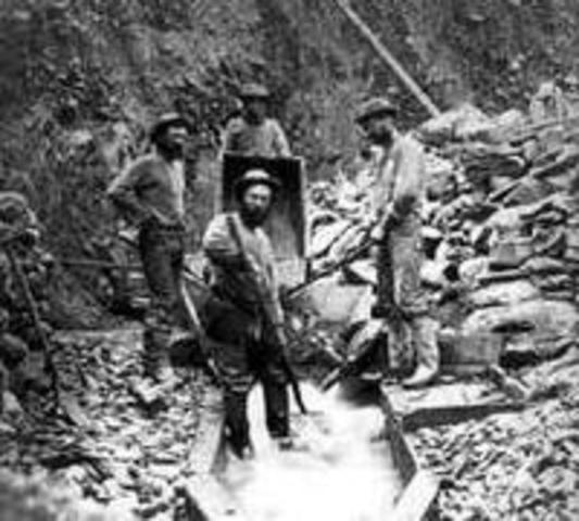 The Fraser Gold Rush