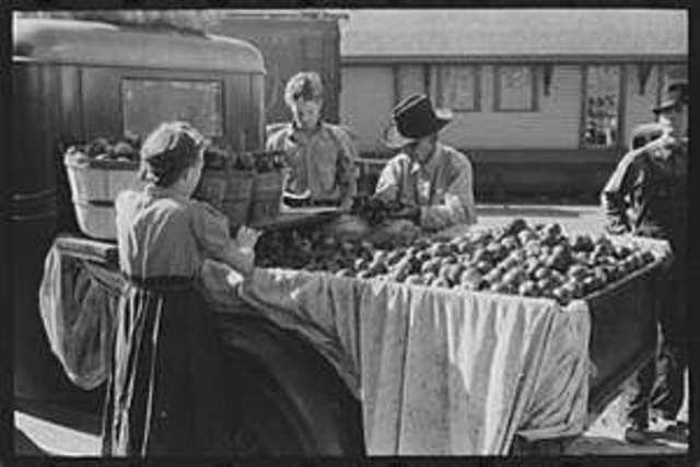 Selling Apples