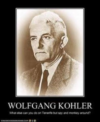 aoprte de Wolfgang Köhler a la gestalt