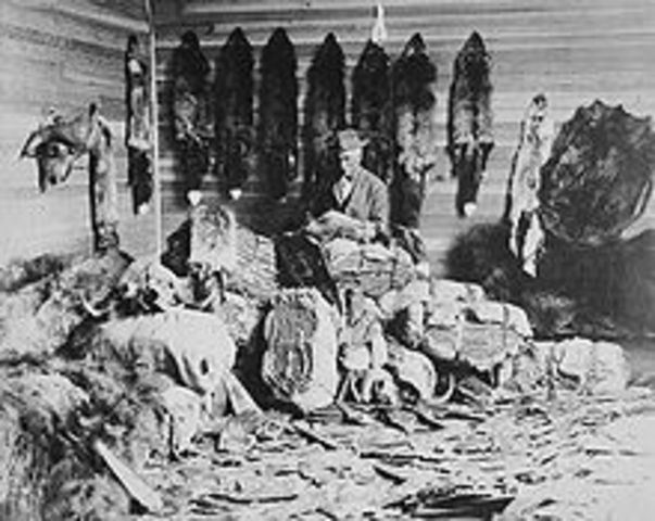 Fur Trade End