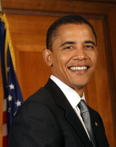 Barack Obama becomes the nation's first black president