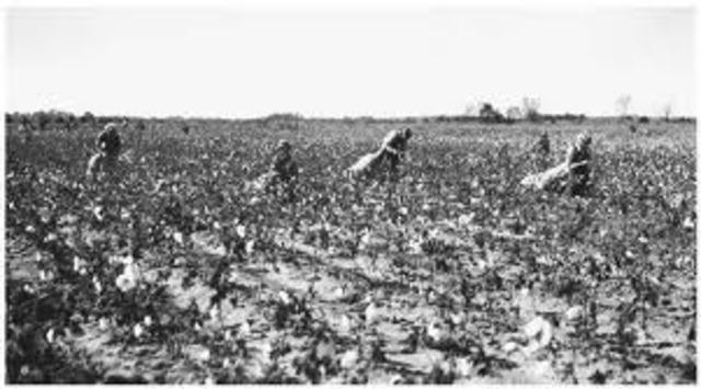 Federal Agricultural Program