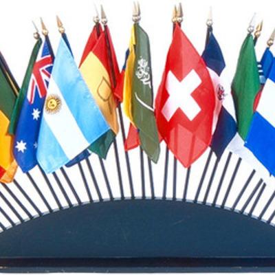 Sophie Lee - International Organizations Timeline