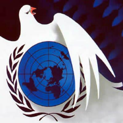 International Organizations- Nikki Wines timeline