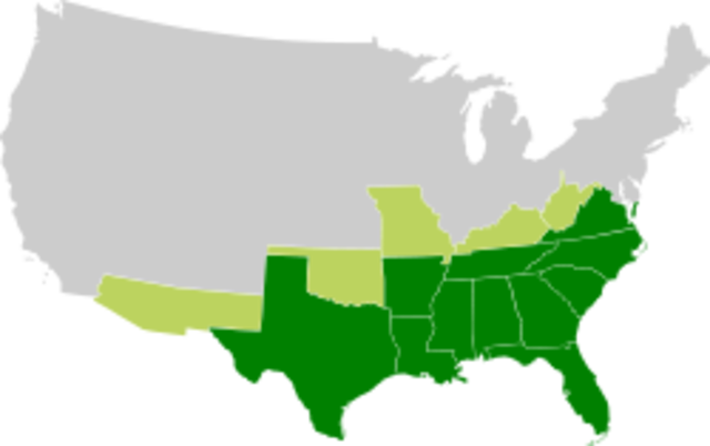 The Confederate States of America is Formed
