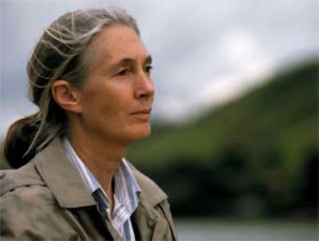 Jane Goodall. 3/4/1934 - Actualidad.