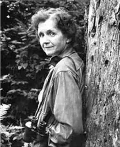 Rachel Carson dies at the age of 56.