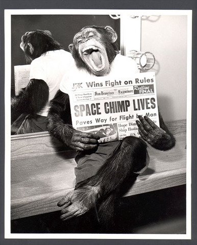 U.S. Launches Chimp In Space