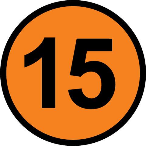 Year 15