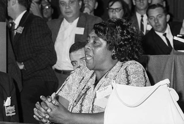 Freedom Summer: Mississippi Freedom Democratic Party Integrated  -Civil Rights