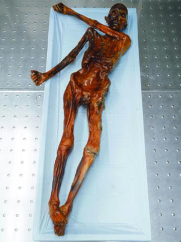 Found oldest known mummy (Iceman)