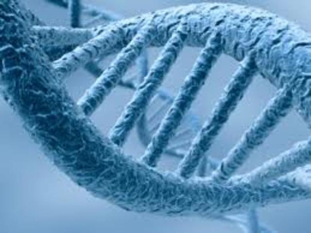 ADN conductor de la electricidad.