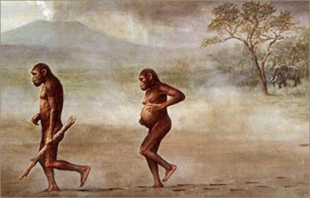 """Australopithecus: (""""monos del sur"""") Antigüedad: 3 ó 4 millones de años"""