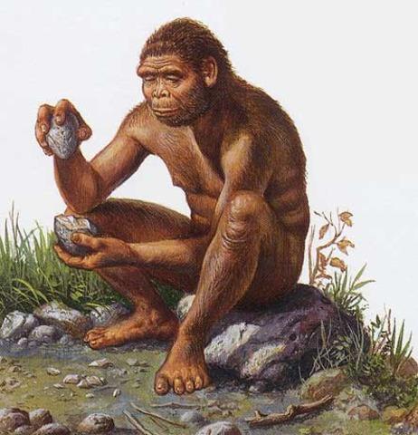 """Homo habilis: (""""hombre hábil"""")  Antigüedad: 2 millones de años"""