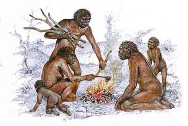 """Homo erectus: (""""hombre erguido"""") Antigüedad: 1.5 millones de años"""