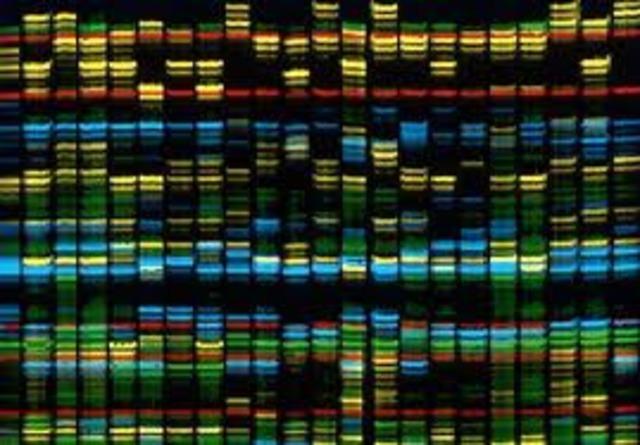 Mapas genéticos