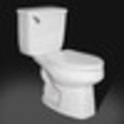 Evolution of the Toilet and Fungi timeline