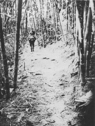Ho Chi Minh Trail construction begins.