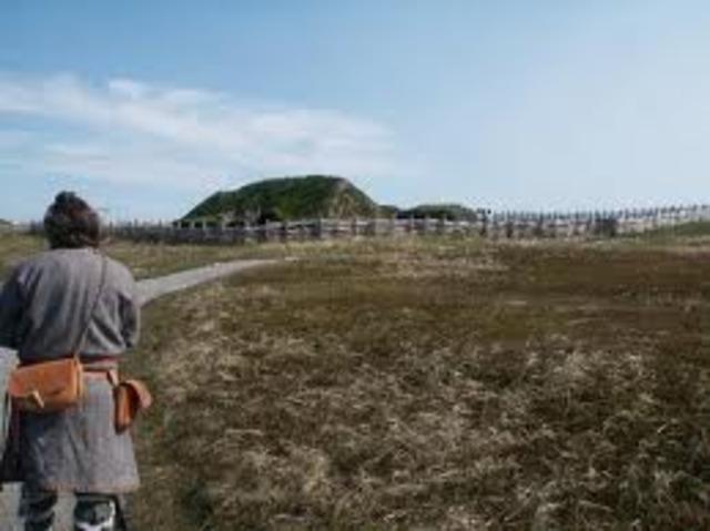 Les Vikings abandonnent la colonie Vinland dans Terre-Neuve