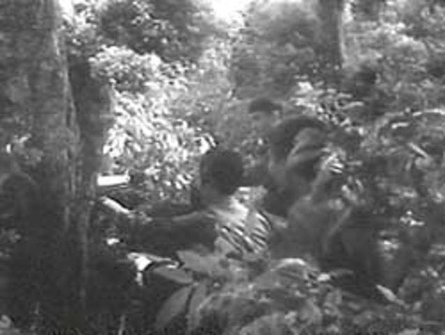 National Front for the Liberation of South Vietnam (NLF) Formed