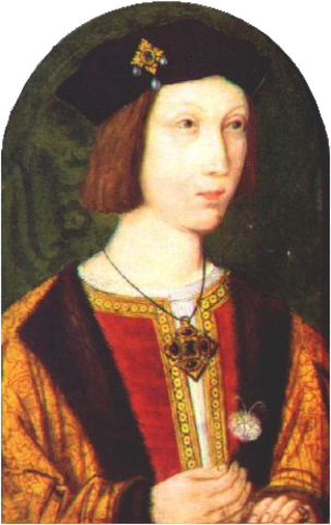 King Henry I's son died.